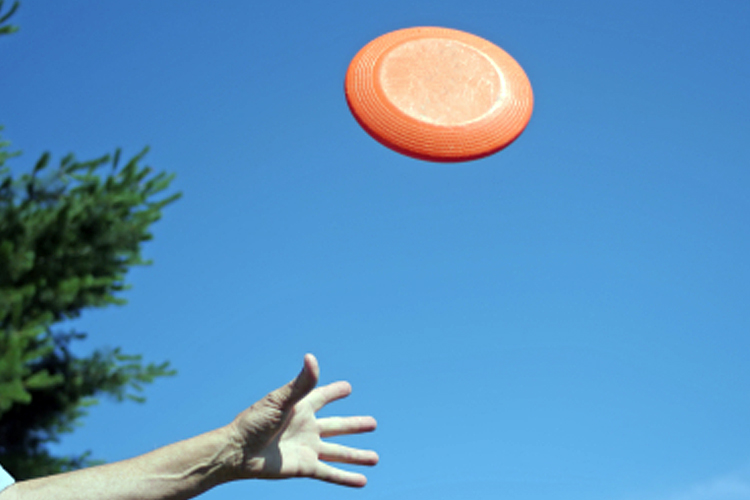 how_the_frisbee_took_flight